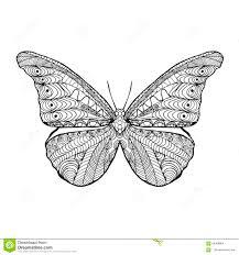 zentangle stylized butterfly stock vector illustration of horns