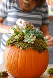 October Decorations Diy Pumpkin Succulent Harvest Decoration Simply Happenstance