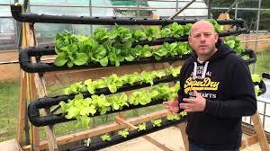 chilli farm aquaponics u0026 hydroponics diy nft system setup