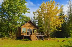 cabins small house bliss the pond cottage a small cabin tucked into a secluded forest meadow inside it