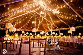 tent rental miami string lights café lights market lights bistro lights rental