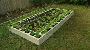 raised vegetable garden ideas decorating clear