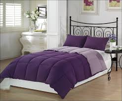 Lavender Comforter Sets Queen Bedroom Wonderful Purple Bed In A Bag Queen Twin Xl Down