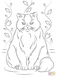 himalayan cat coloring page free printable coloring pages