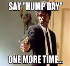 Hump Day Meme - funny hump day quotes