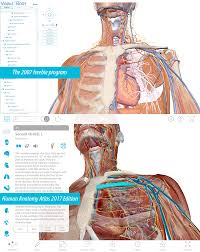 Interactive 3d Anatomy The Visible Body Blog Technology In Anatomy Education