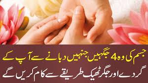 Ki by Gurde Ki Takleef Aur Pathri Khatam Kidney Pain Treatment In