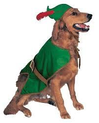 Disney Halloween Costumes Dogs 160 Halloween Dog Costumes Images Animals
