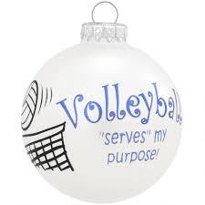 serves purpose glass ornament sports