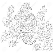 Coloriage De Loiseau De Colombe pigeon Dessin Déquisse à Main