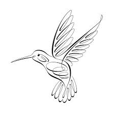 fine line hummingbird tattoo design hummingbird outlines and