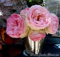 garden of eden flower shop take care of cut roses ultimate rose care