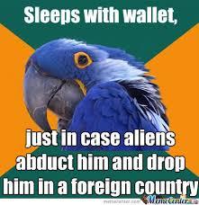 Parrot Meme - paranoid parrot is paranoid by hobbes28 meme center
