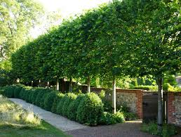 modern country style contemporary country garden designed by