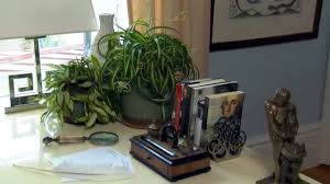 air purification house plants at home with p allen youtube
