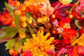 list of fall flowers mexycan montreal mexycanmtl twitter