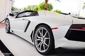 white on white lamborghini gallery white lamborghini aventador roadster in miami by