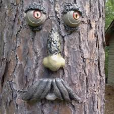 tree face alabama tree faces handpainted glass eyes it happens in alabama