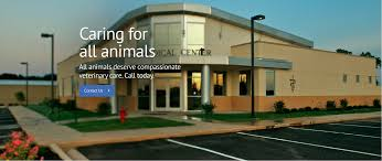 Home Atlas Medical Clinic Doctors All Pets Medical Center Veterinarian In Altus Ok Usa Home