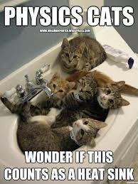 Physic Meme - mrsimonporter physics cat