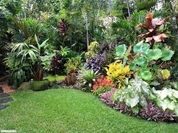 Rustic Garden Ideas Outside Tropical Plants Rustic Garden Design Ideas Garden