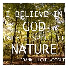 frank lloyd wright quotes home design
