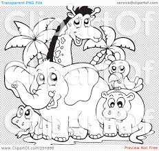 100 color sheets zoo animals meerkat coloring pages
