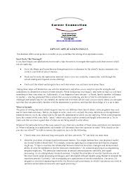bunch ideas of university essay example about format layout