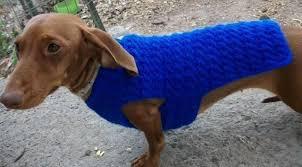 crochet pattern for dog coat dachshund small dog sweater dog coat dog crochet dachshunds and