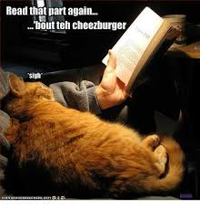 Cheezburger Meme Maker - read that part again bout teh cheezburger sigh herlda ican haschee
