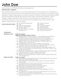 Fake Work Experience Resume Professional Senior Accountant Templates To Showcase Your Talent
