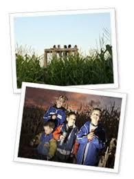 2010 cornbellys utah corn maze past cornbelly mazes thanks