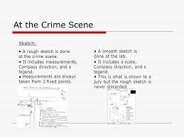 crime scene investigation ppt video online download