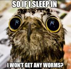 Sad Animal Memes - sad baby owl meme weknowmemes