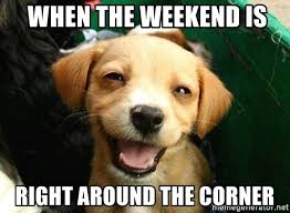 Smiling Dog Meme - when the weekend is right around the corner smiling dog yo