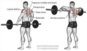 wide grip upright row exercise guide and video weight training guide
