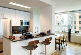 Kitchen Design New York Manhattan Kitchen Design Accent Kitchens Manhattan Kitchen Range