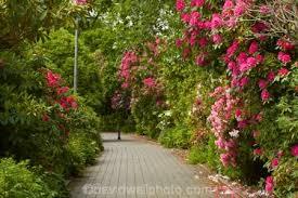 New Zealand Botanical Gardens Botanical Gardens At Park Invercargill Southland South