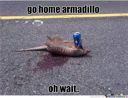Armadillo Meme - go home armadillo oh wait by tourguide67 meme center