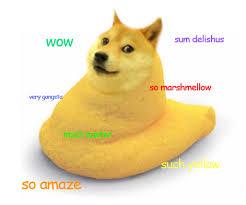 Much Dog Meme - joke4fun memes doge will rule world very rule much world