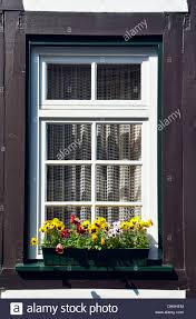 Window Box Curtains A Green Window Box With A Pansy Flower Display Outside A White And