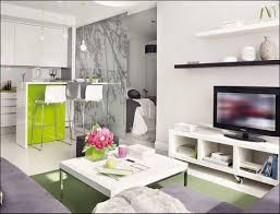 Interior Design Studio Apartment Interior Ll Small Breathtaking Studio Formidable Apartment