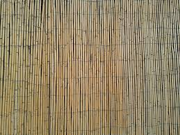 free photo bamboo fence stick wall free image on