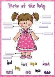of the body elementary worksheet ii