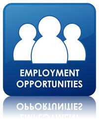 employment opportunities st george u0027s university