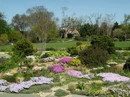 maryland virginia d c garden housecalls the rock idolza