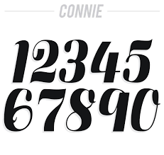motocross race numbers connie numbers 7 inch wild native