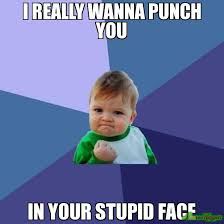 Stupid Face Meme - i really wanna punch you in your stupid face watch it