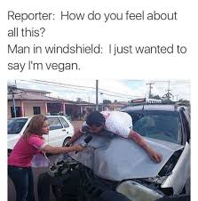 Car Accident Meme - just want to say i m a vegan veganism know your meme