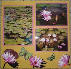 scrapbooking designs water lilies and the lotus flower